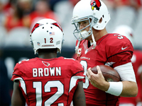 Bruce Arians: Carson Palmer will be 'fine' for Sunday