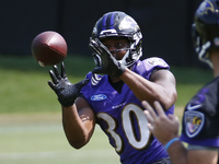 Ravens RB Kenneth Dixon suffers meniscus tear