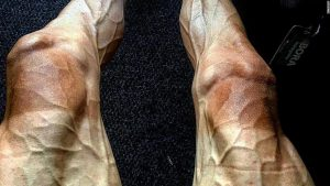 This is what pro cycling does to your legs