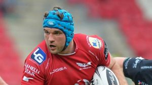 Tadgh Beirne: Scarlets offer Irish lock contract extension, says Wayne Pivac