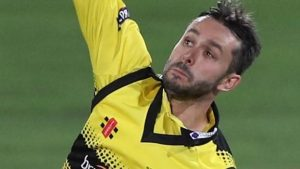 Gloucestershire spinner Taylor banned from bowling