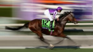 The rise of the globetrotting racehorse