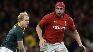 Wales should not play South Africa, says rugby boss