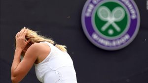 Flying ants' mating rituals cause havoc at Wimbledon