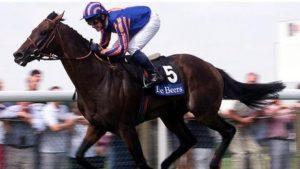 Top stallion Montjeu dies aged 16